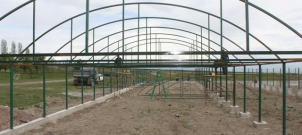 1300 sq.m. greenhouse